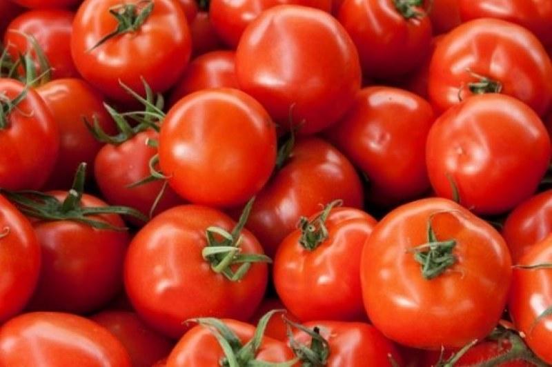 Clima quente pressiona produtores de tomate e preços caem