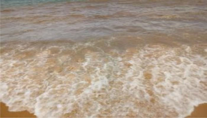 """Diretor do Meio Ambiente de Cabrália fala sobre o derramamento de óleo no mar de """"Guaiú"""""""